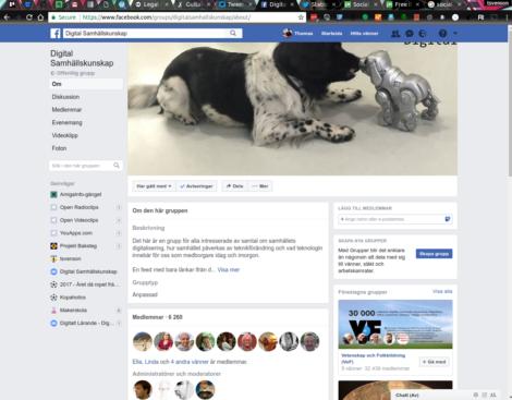 Facebook Thomas